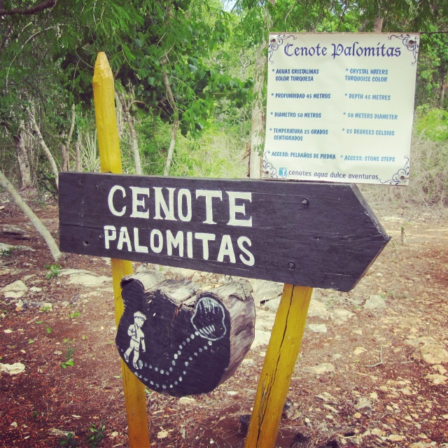 """Cenote Palomitas - crystal waters turquoise color, depth 45 metres, 50 meters diameter, 25 degrees Celsius, access: stone steps."" It looked sketchy in the middle of nowhere, so I was nervous to enter!"